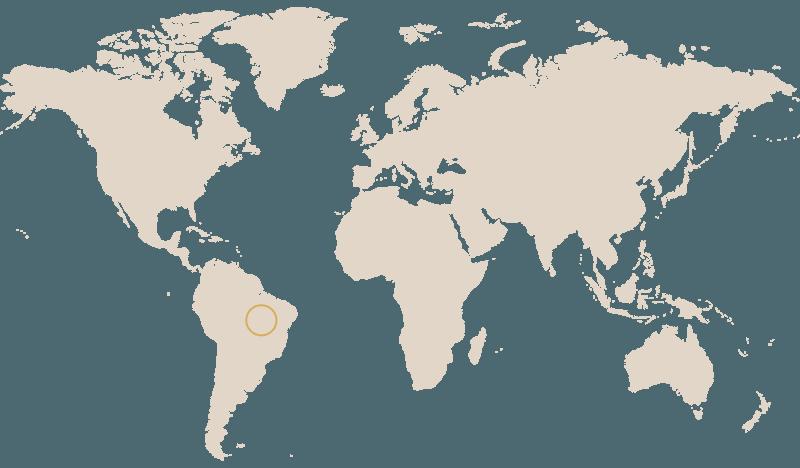 Brazil Caracolito