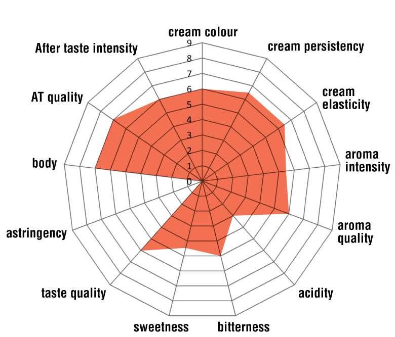 60% Arabica 40% Robusta Organic
