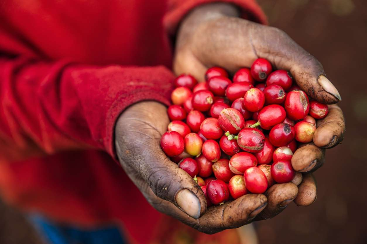 Happy International Coffee Day 2019!