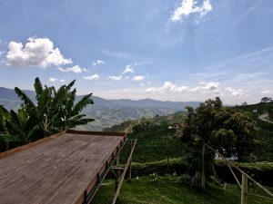 Journey to Colombia: discovering the coffee plantations