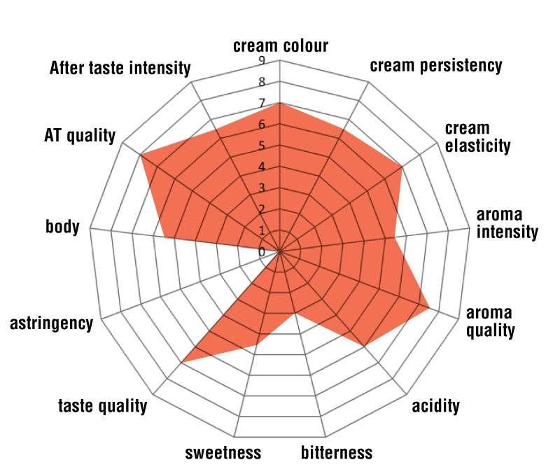 Chiaroscuro 100% Arabica blend