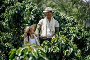 Permaculture: How to grow a really sustainable coffee